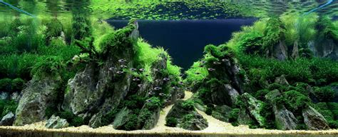 Amano Aquascaping by Science Journal Takashi Amano Aquascaping Can Be