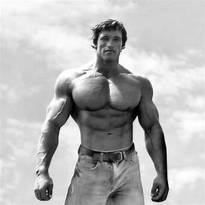 Arnold Schwarzenegger 15 Years Old | www.pixshark.com ...