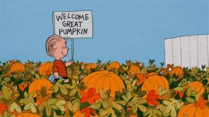 Pumpkin Halloween Horror Prepare