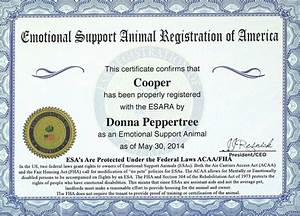 service dog certificate templateservice dog With service dog documentation letter