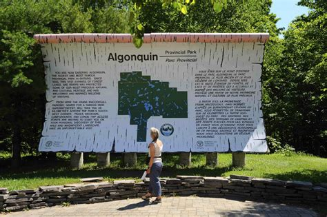 buy nature s way wildlife in algonquin provincial park timeoutdoors