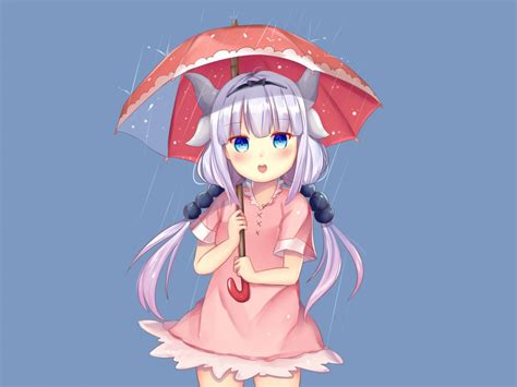curious kanna kamui  umbrella kobayashi san chi