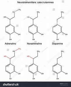 Structural Chemical Formulas Neurotransmitters Adrenaline ...