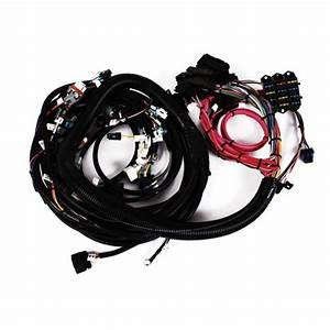 Speedway 2007 Ls3  Ls7 Engine Wiring Harness