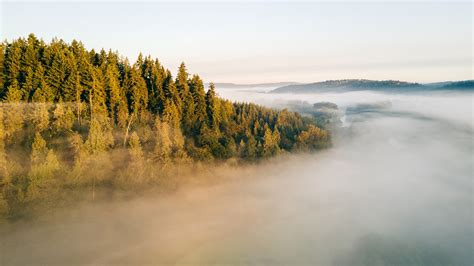 wallpaper fog landscape  nature
