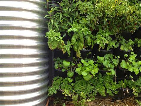 Edible Vertical Garden by Best Edible Plants For Your Vertical Garden