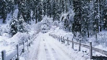 Snow Falling Fall Tweet Ice Snowflakes Fallen