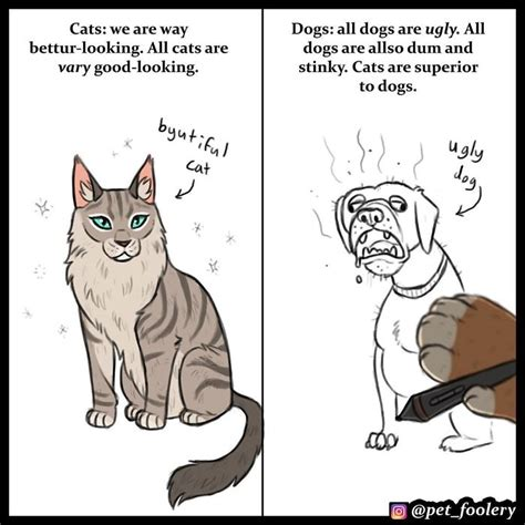 cats dogs better than why cat then dog comics superior vs hilarious debate explaining decided kittens pet welovecatsandkittens these lot