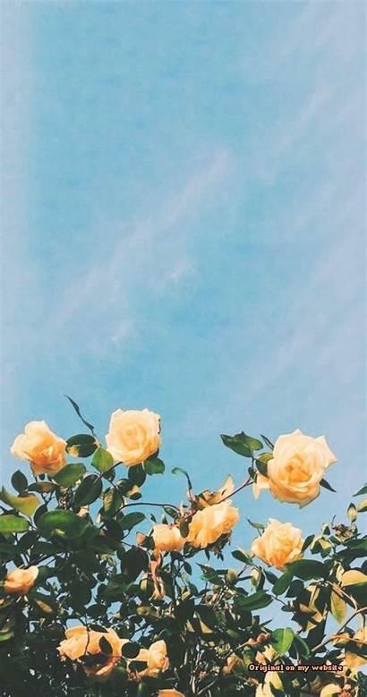 Lock Screen Flower Wallpapers Screens Iphone Background