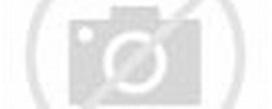 桃園桃鶯路淹水 今晨最新影像   即時新聞   20120612   蘋果日報