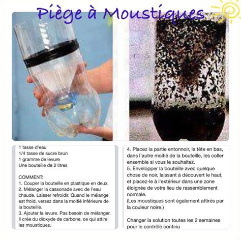 pi 232 ge 224 moustiques fait maison inspiration insect