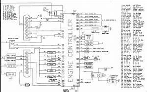 Saab 9 5 Radio Wiring Diagram  U2013 Dogboi Info