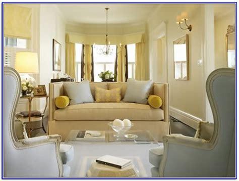Light Color Paint For Living Room Smileydotus