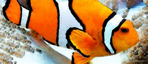 tropical fish shower curtain clown fish clownfish tropical fish painting by