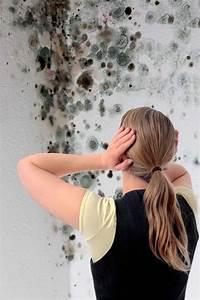 Modriger Geruch Entfernen : schimmelbek mpfung und pr vention schimmel wirksam entfernen ~ Frokenaadalensverden.com Haus und Dekorationen