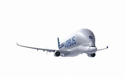 Beluga Airbus Aircraft A380 A350 Xwb Passenger