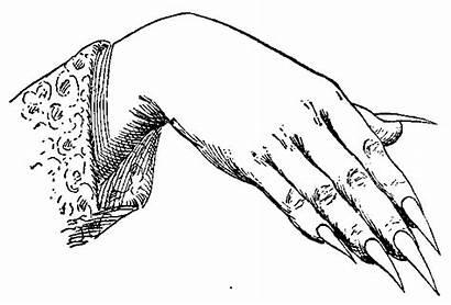 Drawing Hands Finger Nails Drawn Fingernail China