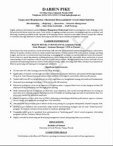 examples of professional resumes writing resume sample With professional cv resume writing service