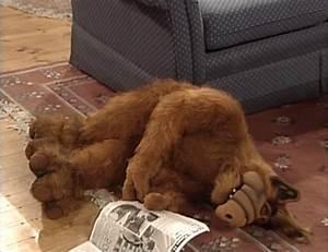 Alf Reviews   U0026quot Alone Again  Naturally U0026quot   Season 3  Episode