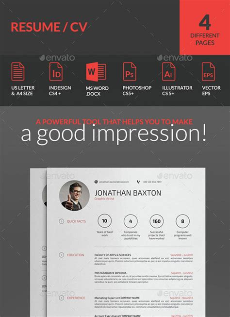 10 all time best premium simple infographic resume cv