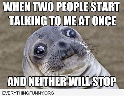 Seal Meme - funny seal meme when two people are talking at the same time and neither will stop funny