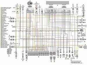 Arctic Cat 400 Wiring Diagram