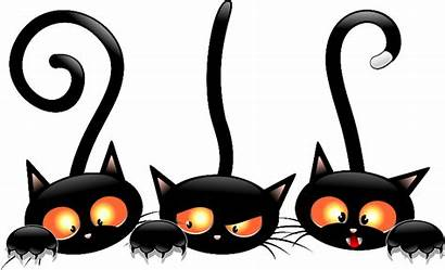 Halloween Cat Cats Witch Clipart Cartoon Tubes
