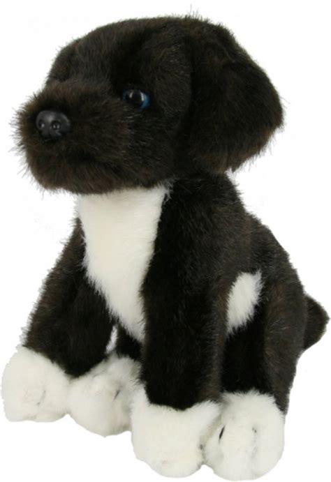 Buitenspeelgoed Voor Honden by Bol Knuffel Friese Stabij Puppy 22 Cm Speelgoed