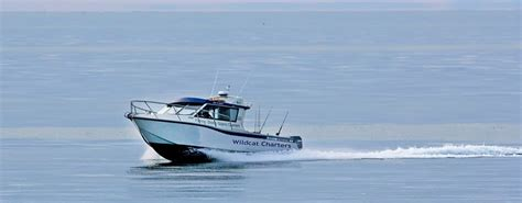 Fishing Boat Terms by Motel Fishing Charters Terms Conditions