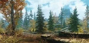 Whiterun, Forest, At, Skyrim, Nexus