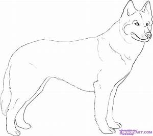 Draw A Husky Step By Step Drawing Sheets Added By Dawn