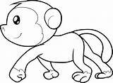 Monkey Coloring Cute Sheets Animals sketch template