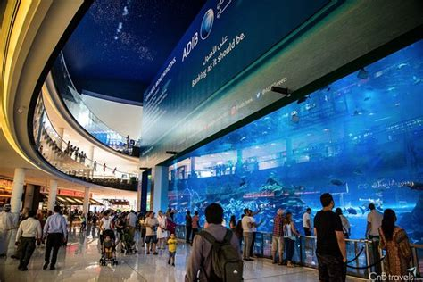 the dubai mall aquarium emirates towers and metro station bild fr 229 n dubai tour dubai tripadvisor