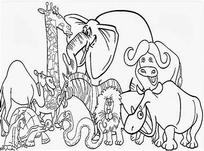 Coloring Animals Pages
