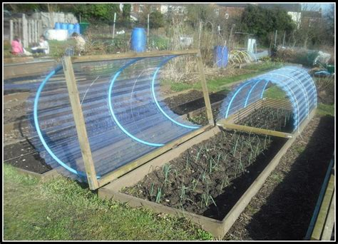 Garden Bed Cover Ideas 25 best allotment ideas on when starts