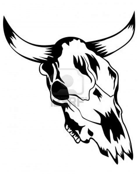 Longhorn Skull Drawing at GetDrawings | Free download