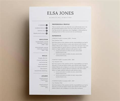 basic resume templates  examples