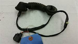 Oem 00 Ford F250 Super Duty Rear Driver U0026 39 S Door Wiring Harness  U0026 Rubber Boot Lh
