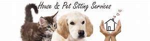 House sitting pet sitting services by reliable couple for Dog house sitting services
