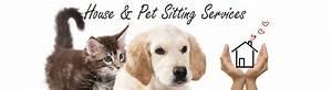 House pet sitting gallery for Babysitter dog sitter