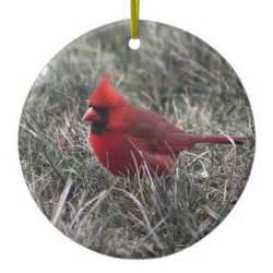 red cardinal christmas tree ornament zazzle
