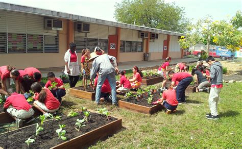 Garden School by School Gardens