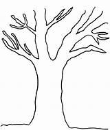 Coloring Tree Outline Clip Clipart Oak Leaf Bare Google Promise Printable Trunks Bear Trunk Starklx Designlooter Library Template Clipartkid Enregistree sketch template