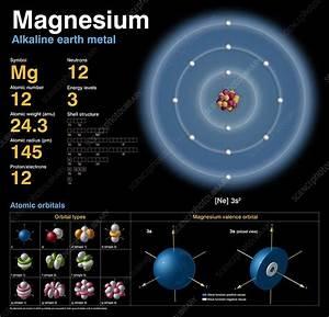 Magnesium  Atomic Structure  3693