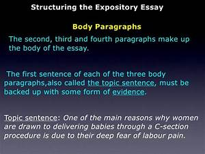 Expository essay body paragraphs