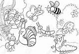 Coloring Bug Pages Printable Bugs Getdrawings sketch template