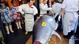 Record price paid for massive tuna – This Just In - CNN ...