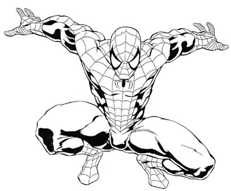 Spiderman Outline Drawing At Getdrawings.com