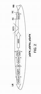 42 1058 Wiring Diagram