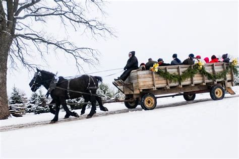 best christmas tree farms in aurora illinois 17 best images about my hometown woodstock il on typewriters orson welles and